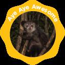 Aye-Aye Awesome - Level 2