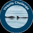 Vaquita Challenge - Level 3